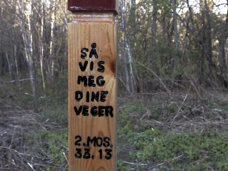 Merkepinnen ved skogbrynet